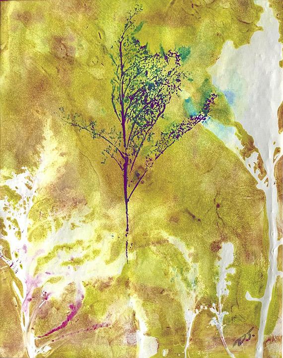 Trees, Flowers, & Plants